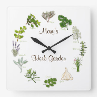 Jardín de hierbas reloj cuadrado