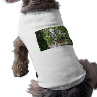 Jardín de la camisa del mascota de Eden Ropa Macota