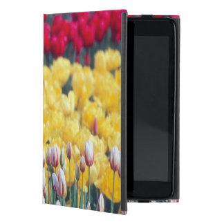 Jardín de la exhibición del tulipán en el valle de iPad mini cárcasa