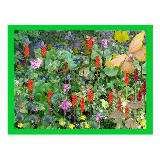 Jardín de la fantasía tarjeta postal