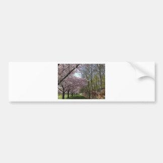 Jardín de la flor de cerezo etiqueta de parachoque