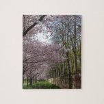 Jardín de la flor de cerezo rompecabeza con fotos