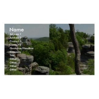 Jardín de la Illinois Dios-Meridional Stereograph Tarjeta De Negocio