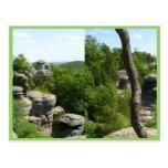 Jardín de la Illinois Dios-Meridional. Stereograph Tarjetas Postales