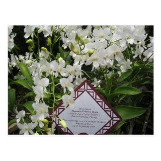 "Jardín de la orquídea de ""princesa Diana"", Singapu Tarjetas Postales"