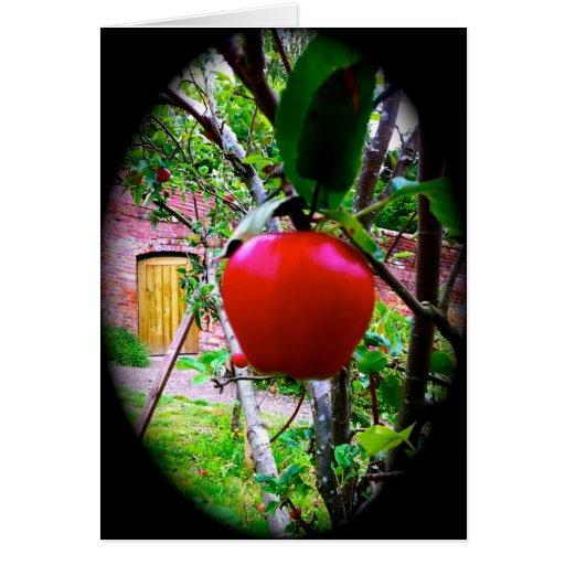 Jardín de la tarjeta de la tarjeta del día de San