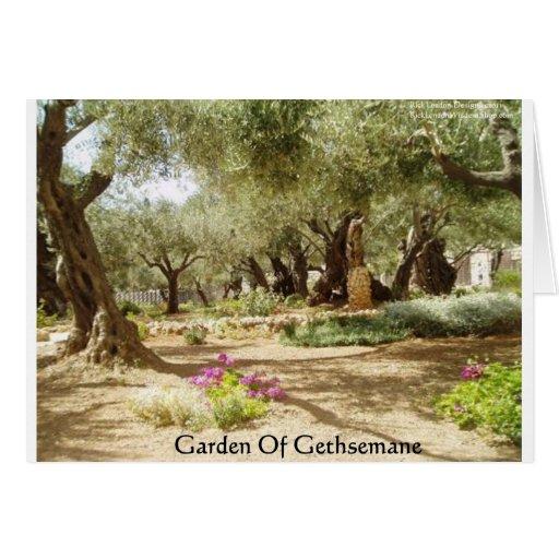 Jardín de las tarjetas cristianas de las camisetas