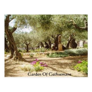 Jardín de las tarjetas cristianas de las camisetas tarjetas postales