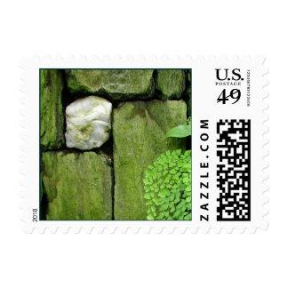 Jardín de piedra - franqueo #2