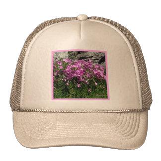 Jardín de piedras rosado de la flor gorras de camionero