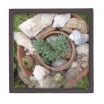 Jardín de rocalla miniatura caja de recuerdo de calidad
