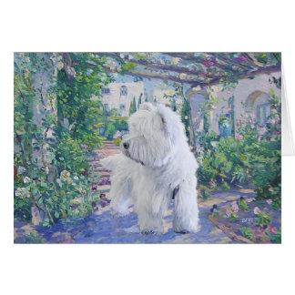 Jardín de Terrier blanco de montaña del oeste Tarjetas