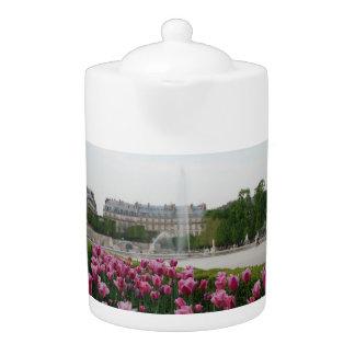 Jardín de Tuileries en la floración