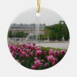 Jardín de Tuileries en la floración Adorno De Reyes