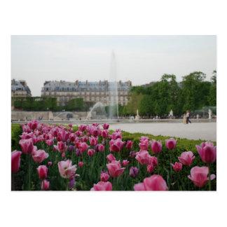 Jardín de Tuileries en la floración Tarjetas Postales