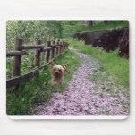 Jardín de Yorkshire Terrier Mousepad Alfombrillas De Raton