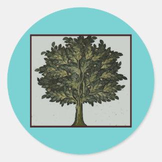 Jardín del árbol etiquetas redondas