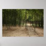 Jardín del bambú de la colina del tigre impresiones