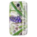 Jardín del bulbo - jacinto de uva
