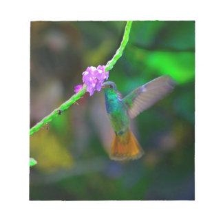 Jardín del colibrí bloc de notas