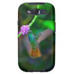 Jardín del colibrí galaxy s3 protector