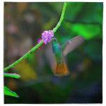 Jardín del colibrí servilletas imprimidas