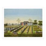 Jardín del cuarto de niños, c.1820-40 (w/c en el tarjetas postales