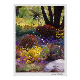 Jardín del desierto, poster