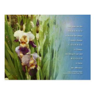 Jardín del iris del rezo de la serenidad tarjeta postal