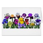 Jardín del iris tarjetón