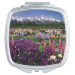 Jardín del iris y del Lupine y gama de Teton, Espejos De Viaje