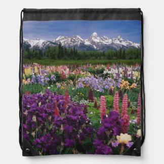 Jardín del iris y del Lupine y gama de Teton, Mochila