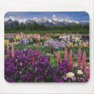 Jardín del iris y del Lupine y gama de Teton, Tapete De Ratones