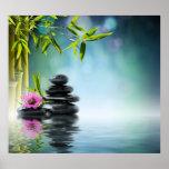 Jardín del paraíso del zen, serenidad, pacífica, y impresiones