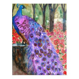 Jardín del pavo real tarjetas postales