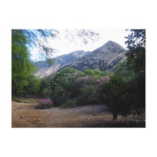 Jardín del Plumeria Impresión En Lienzo