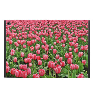 Jardín del tulipán