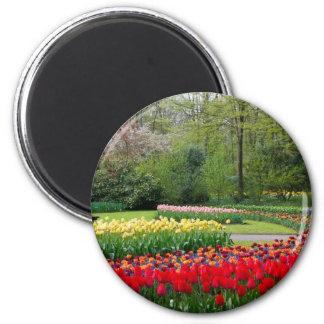 Jardín del tulipán imán redondo 5 cm