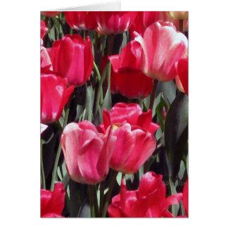 Jardín del tulipán tarjeton