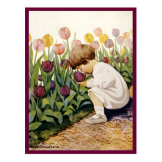 Jardín del tulipán tarjeta postal