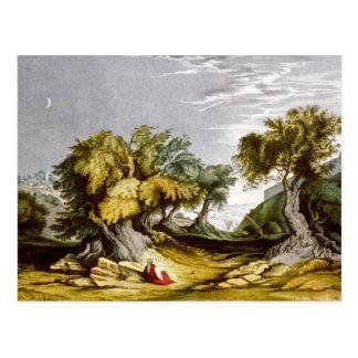 Jardín del vintage del ejemplo 1846 de Gethsemane Tarjetas Postales