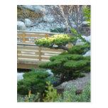 Jardín del zen postal