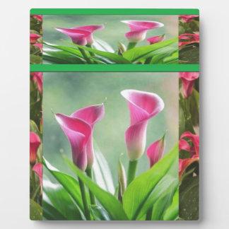 Jardín DIL Hogaya: HOJA de las flores Placas Con Foto