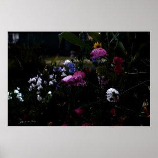 Jardín en el claro de luna posters