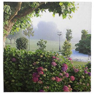 Jardín en la niebla, Arzúa, España 2 del Hydrangea Servilleta