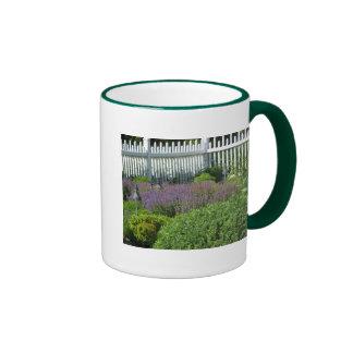 Jardín en la taza de Long Island