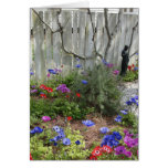 Jardín en tarjeta de la primavera 1