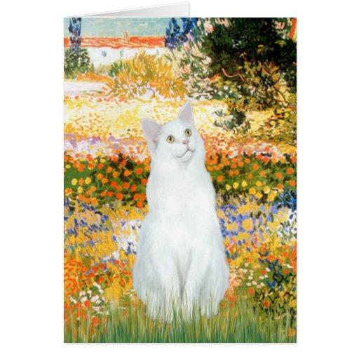 Jardín Fiorito - gato blanco Tarjeta De Felicitación