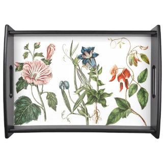 Jardín floral de las flores botánicas del vintage bandejas