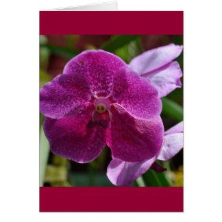 Jardín floral tarjeta de felicitación